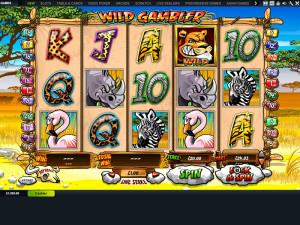 gala casino wild gambler slot